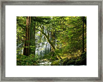 Panther Creek Framed Print by Jean Noren