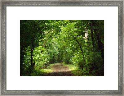 Path To Serenity Framed Print by Shellie and Steve Hill