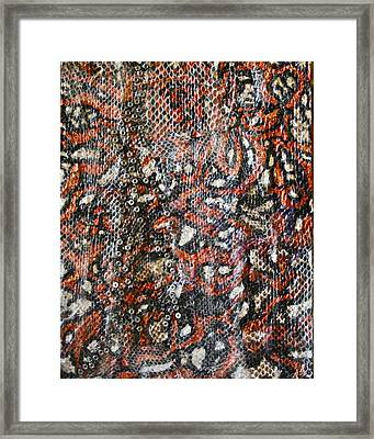 Pathways Framed Print by Ruth Edward Anderson