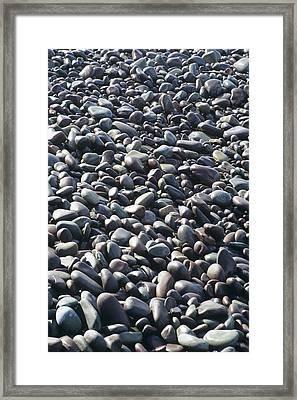 Pebbles On A Beach Framed Print by David Aubrey