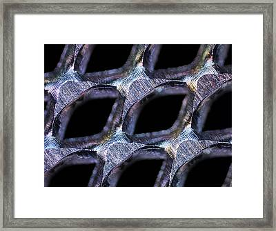 Perforated Steel Sheet, Light Micrograph Framed Print