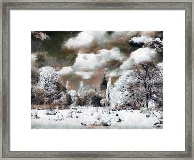 Picnic In Park Framed Print by Odon Czintos