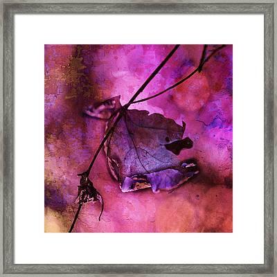 Love Hangs On Framed Print by Bonnie Bruno