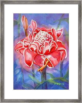 Pink Ginger Framed Print by Estela Robles