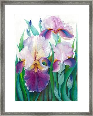 Pink Iris Framed Print