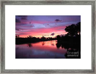 Plantation Preserve Sunset Framed Print by Jennifer Zelik