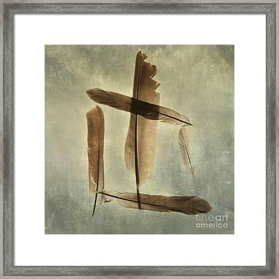 Plumage Framed Print by Bernard Jaubert