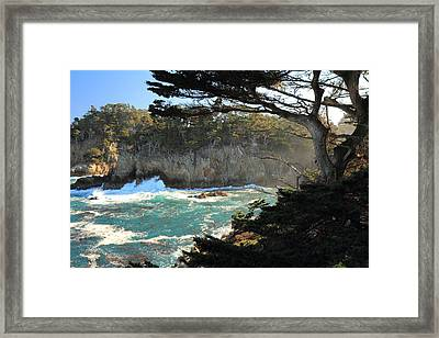 Framed Print featuring the photograph Point Lobos Cypress by Scott Rackers