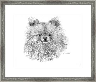 Framed Print featuring the drawing Pomeranian by Jim Hubbard