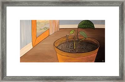 Pot Framed Print