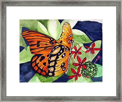 Precocious Butterfly Framed Print