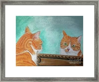 Pretty Kitty Framed Print by Teresa Vecere