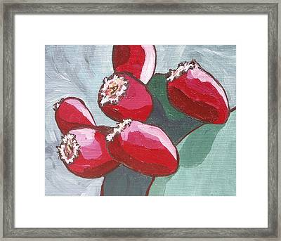 Prickly Pear Fruit Framed Print by Sandy Tracey