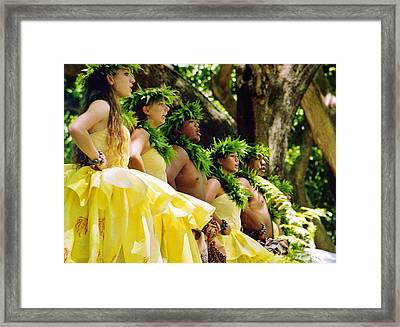 Prince Lot Hula Festival Framed Print by Craig Wood