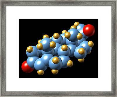 Progesterone Hormone, Molecular Model Framed Print by Dr Mark J. Winter