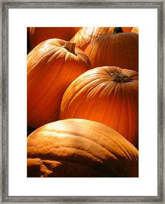 Pumpkin Glow Framed Print by The Forests Edge Photography - Diane Sandoval