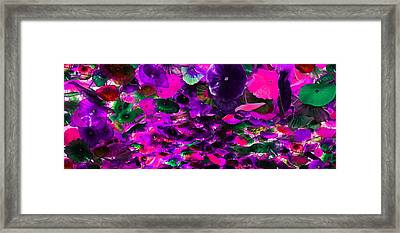 Purple Pink And Green Glass Flowers Framed Print
