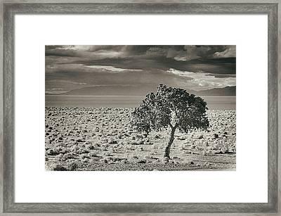 Pyramid Lake, Nevada, Usa Framed Print by Mel Curtis