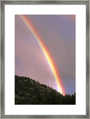 Rainbow Framed Print by Alan Sirulnikoff
