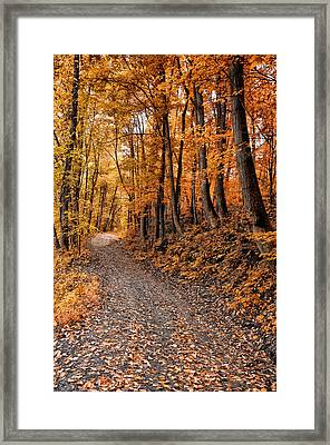 Ramble On Framed Print by Bill Cannon