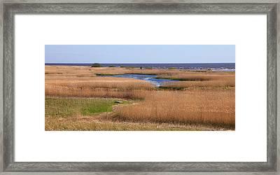 Rand Meadows In Ainazi Framed Print