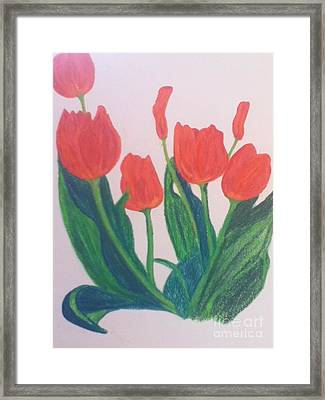 Red Tulips Framed Print by Berta Barocio-Sullivan