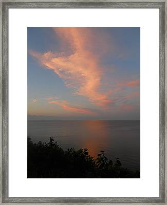 Reflection Framed Print by Sarah Vandenbusch