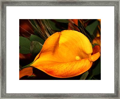 Rewolf Framed Print by Jerry Cordeiro