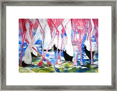 Rift Valley Flamingo Feeding Framed Print