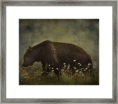 Roaming Daisies  Framed Print by Empty Wall