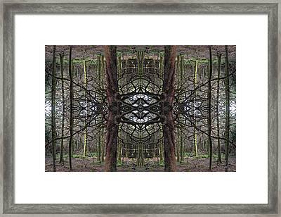 Roan Fantasy Framed Print by Ed Kelley