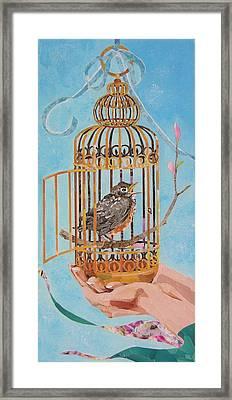 Robin Bird Framed Print