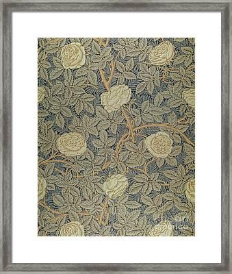 Rose Framed Print by William Morris