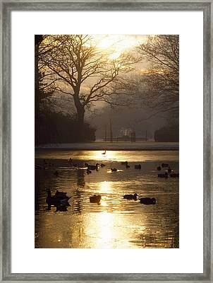 Saint Stephens Green, Dublin, Co Framed Print by The Irish Image Collection