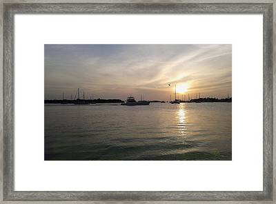 Salinas Bay Framed Print by Tony Rodriguez