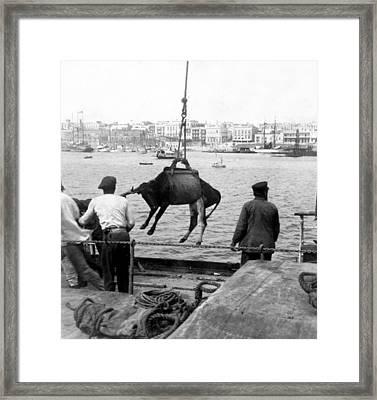 San Juan Harbor - Puerto Rico - C 1900 Framed Print by International  Images