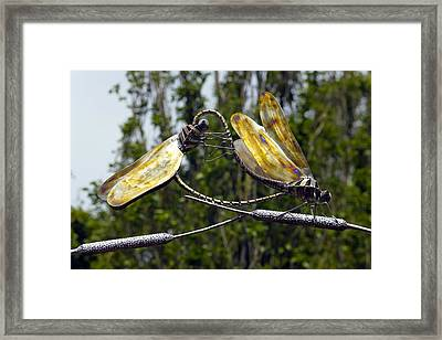 Sculpture Of Two Dragonflies Framed Print by Dr Keith Wheeler