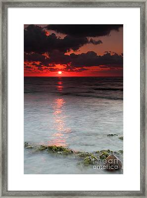 Sea Scape Sunrise Framed Print