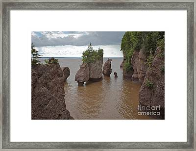 Seastacks At Hopewell Rocks Framed Print