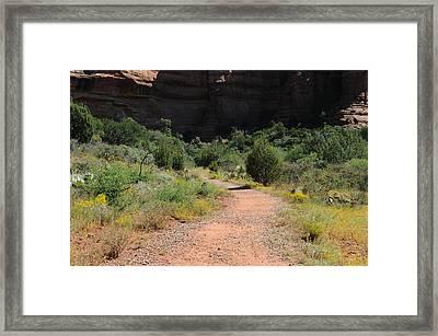 Sedona 03 Framed Print by Earl Bowser