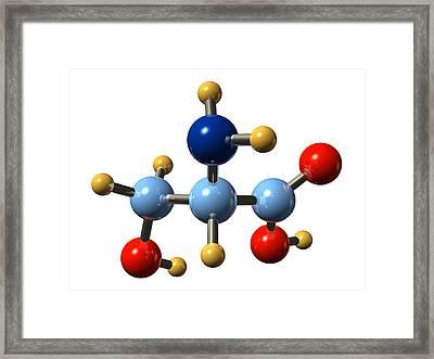 Serine, Molecular Model Framed Print