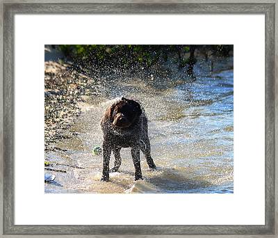 Framed Print featuring the photograph Shake Shake Shake by Jeanne Andrews
