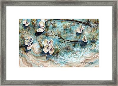 Shell Shadows Framed Print by Tanja Ware