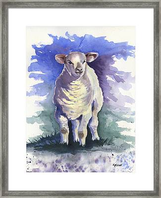 Shellies Lamb Framed Print