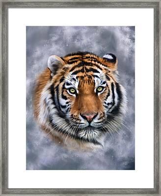 Siberian Tiger Framed Print