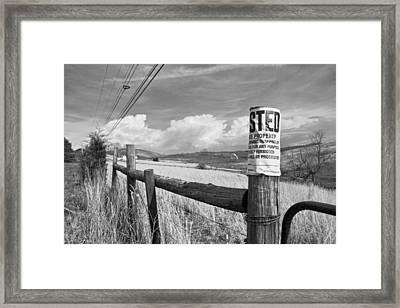 Signs Framed Print by Betsy Knapp