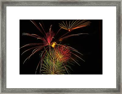 Sky Flowers Framed Print by Joshua Dwyer
