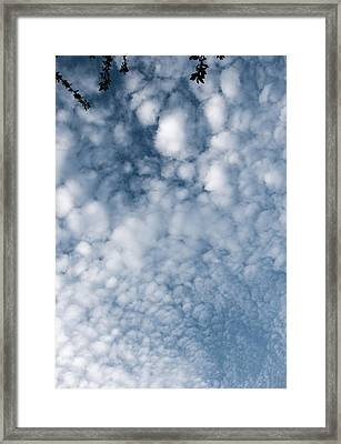 Framed Print featuring the photograph Sky Fluff by Lenny Carter