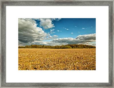 Skyway Framed Print by Rachel Cohen