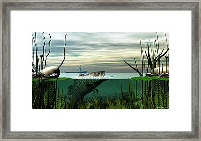 Smallmouth Bass Framed Print by Walter Colvin